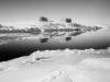 Paolo Solari Bozzi© - Tiniteqilaaq, Groenlandia 2016_preview