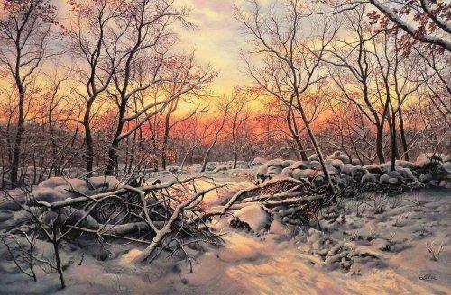 I colori del tramonto, 2011: 14 - olio su tavola - cm 60x40